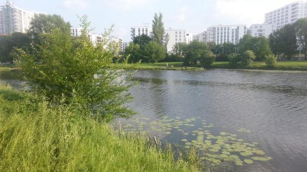 Prywatyzacja jezior